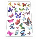 Butterflys Sheet
