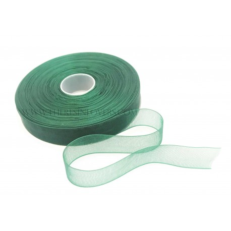 Green Bordered Organza Ribbon 1.5 cm