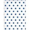 Carta regalo Pois Blu e Bianco 70x100cm