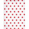 Carta regalo Pois Rossi e Bianco 70x100cm